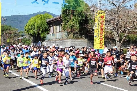 【特別特集】今年でラストラン!第33回 綾・照葉樹林マラソン